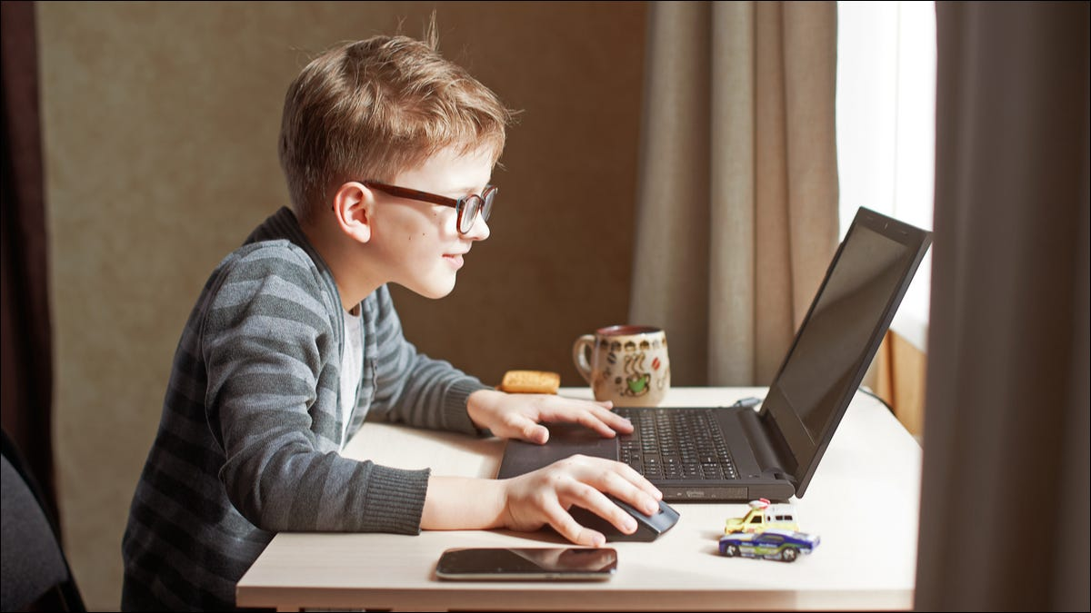 A kid using a computer