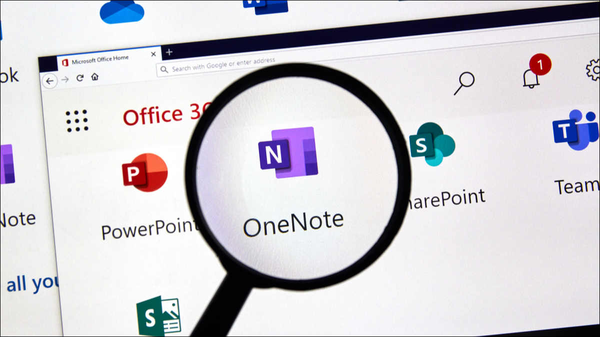 OneNote logo with magnifying glass