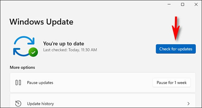 """Click """"Check for updates."""""""