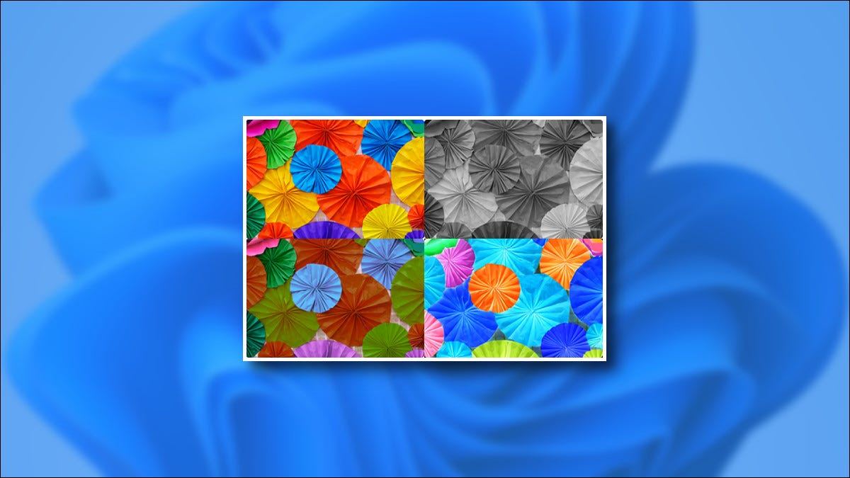 Windows 11 Color Filter Image Examples