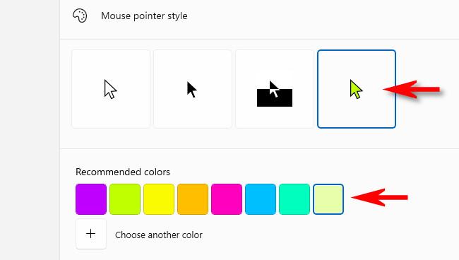 Choose a mouse pointer color.