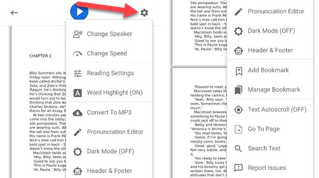 In-book settings menu.