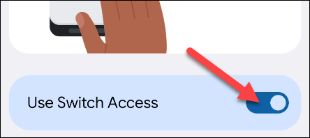 """Toggle """"Switch Access"""" on."""