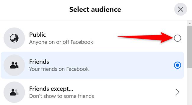 """Seleziona """"Pubblico"""" nella finestra """"Seleziona pubblico"""" su Facebook."""