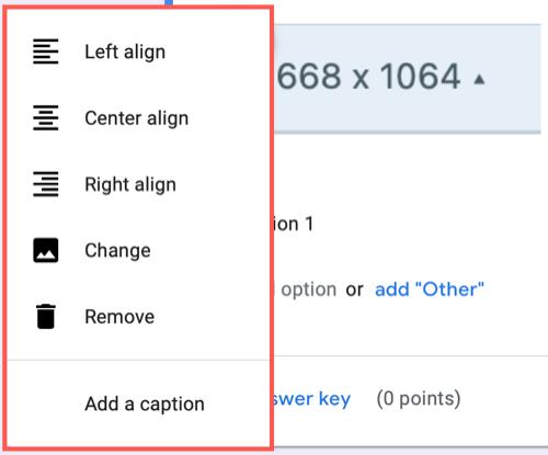 Adjust the image using the context menu