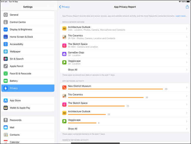 App Privacy Report (Preview)