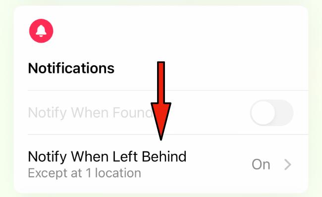 iPhone Separation Alerts settings