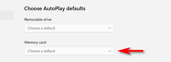 "Click the drop-down menu below ""Memory Card."""