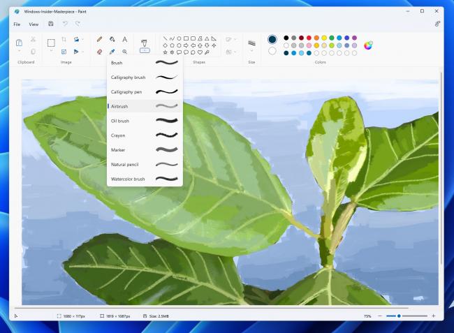 Windows 11 Paint app brushes