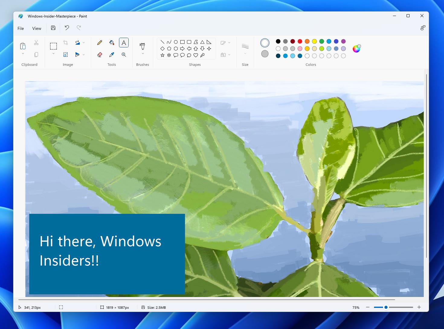 Windows 11 Paint app text
