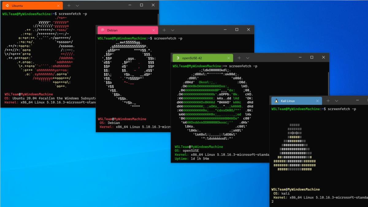 Ubuntu, Debian, openSUSE, and Kali Linux running in WSL on Windows.
