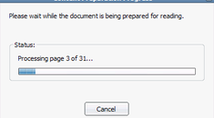 """Remove """"Please wait while the document is being prepared for reading"""" Message in Adobe Reader 8"""