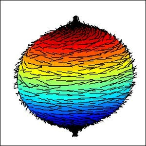 Graphic representation of the hairy ball theorem